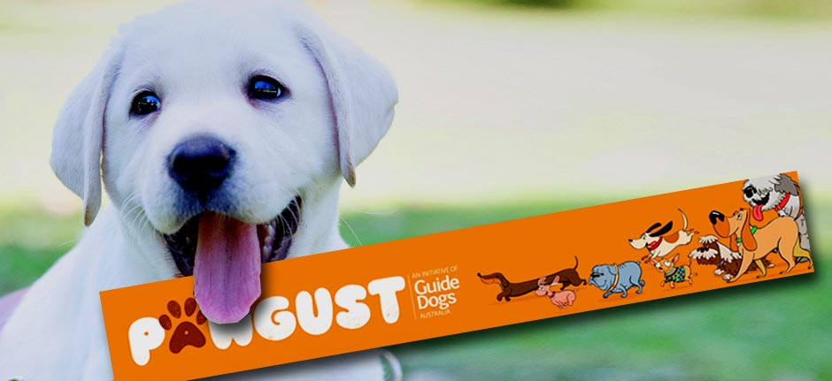 Give the pooch a boost in pawgust!