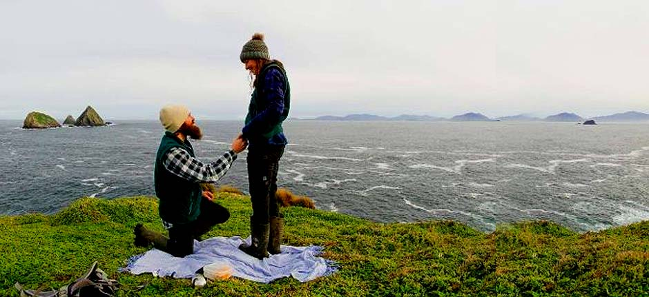 Seals and eagles witness lighthouse keepers' engagement